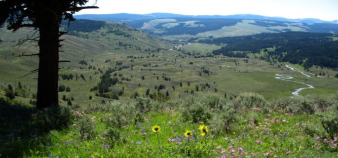 Perfect ranch holiday for families in Montana