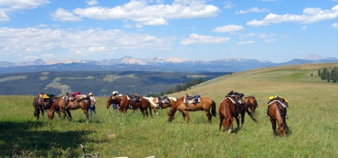 Elkhorn Ranch Montana USA