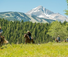 Montana luxury resort ranch with American Round-Up