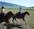 Rocking Z Ranch excellent for experienced horse riders