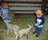 Great for kids at the Focus ranch as a hands on holiday