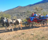 Wagon rides at this dude ranch in Arizona